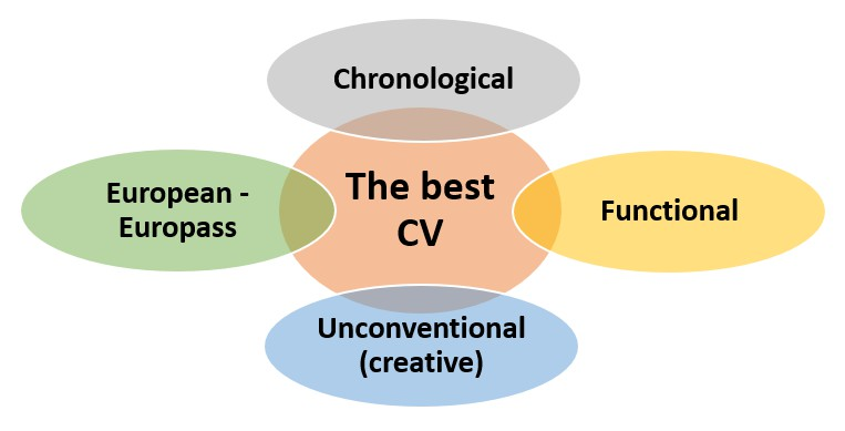 CV types presented in the form of overlapping shapes.